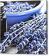 Lavender Herb And Essential Oil Canvas Print
