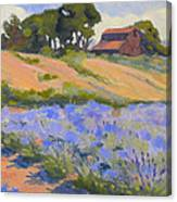 Lavender Hollow Farm Canvas Print