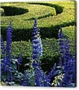 Lavender Maze Canvas Print