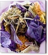Lavender Potpourri Canvas Print