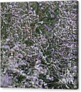 Lavender Silver Lining Canvas Print