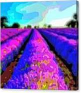 Layer Landscape Art Lavender Field Canvas Print