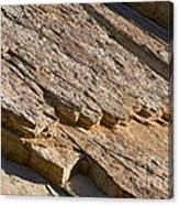 Layered Rock Canvas Print