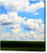 Layers Of Summer In Ohio Canvas Print