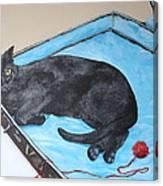 Lazy Black Cat Canvas Print
