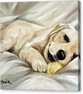 Lazy Bones Canvas Print
