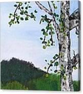 Lazy Daze Of Summer Canvas Print