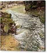 Lazy Mountain Stream Canvas Print