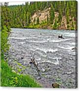 Le Hardy Rapids Of Yellowstone River In Yellowstone River In Yellowstone National Park-wyoming   Canvas Print