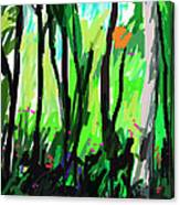 Le Mystic  Canvas Print