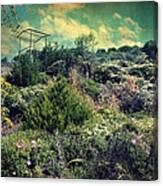 Le Printemps Canvas Print