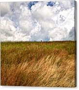 Leaden Clouds Over Field Canvas Print