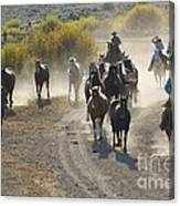 Leading Horses To Pasture Canvas Print