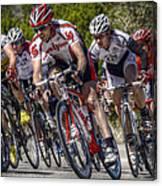 Leading The Race Canvas Print