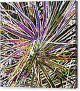 Leaf Abstract II Canvas Print
