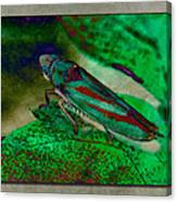 Leaf Hopper Canvas Print