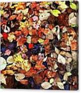 Leaf Patterns 3 Canvas Print