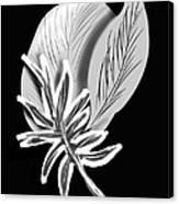 Leaf Ray Canvas Print