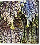 Leaf Series 15 Canvas Print