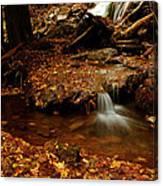 Leaf Splatter Canvas Print