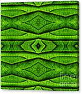 Leaf Structure Abstract Canvas Print