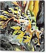 Leafy Dragon Canvas Print