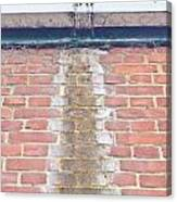 Leaking Gutter Canvas Print