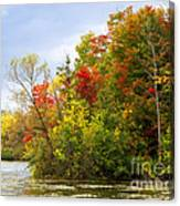 Leaning Into Autumn Canvas Print