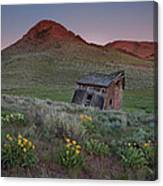 Leaning Shed Canvas Print