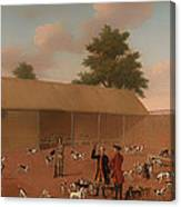 Learning About The Hounds Canvas Print
