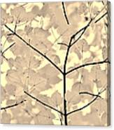 Leaves Fade To Beige Melody Canvas Print