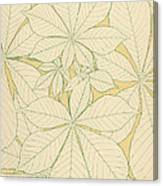 Leaves From Nature Canvas Print