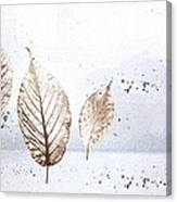 Leaves In Snow Canvas Print