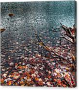 Leaves In The Lake Canvas Print