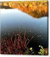 Leaves On The Lake Canvas Print
