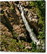 Leavitt Falls  Canvas Print