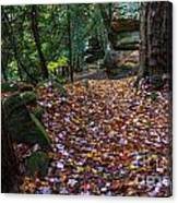 Ledges Overlook Trail 5 Canvas Print