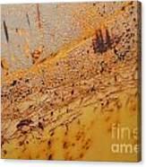 Lemon Aide Canvas Print