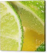 Lemon And Lime Slices In Water Canvas Print