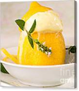 lemon Sorbet   Canvas Print