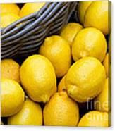 Lemons 01 Canvas Print