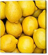 Lemons 02 Canvas Print