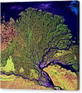 Lena Delta Canvas Print