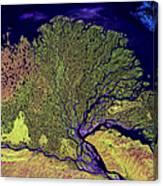 Lena River Delta Canvas Print