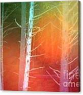 Lens Flare In The Forest Canvas Print