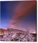 Lenticular Clouds Over Almond Trees Canvas Print