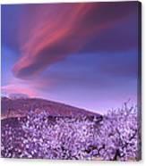 Lenticular Clouds Over Sierra Nevada Canvas Print