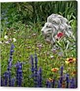 Leo In The Garden Canvas Print