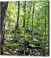 Leominster Massachusetts State Reservation Canvas Print