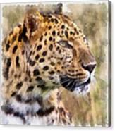Leopard 7 Canvas Print